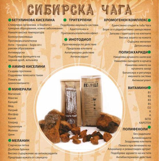 Сибирска чага екстракт активни вещества